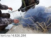 Купить «Мужчины принимают участие в зимней рыбалке сетями на озере», эксклюзивное фото № 4826284, снято 13 марта 2013 г. (c) Николай Винокуров / Фотобанк Лори
