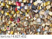 Купить «Замки влюбленных на мосту в Париже. Франция», фото № 4827432, снято 24 июня 2013 г. (c) Екатерина Овсянникова / Фотобанк Лори