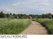 Дорога в деревне. Стоковое фото, фотограф Marina Kovyneva / Фотобанк Лори