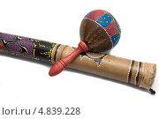 Маракас - музыкальный инструмент. Стоковое фото, фотограф Илья Попов / Фотобанк Лори