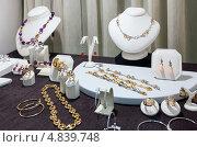 Купить «Ювелирные украшения в витрине магазина», фото № 4839748, снято 26 апреля 2013 г. (c) Яков Филимонов / Фотобанк Лори