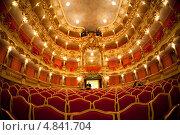 Купить «Театр Кювилье», фото № 4841704, снято 23 февраля 2013 г. (c) Донцов Евгений Викторович / Фотобанк Лори