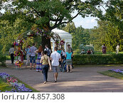 Купить «Летний день в Павловском парке. г.Санкт-Петербург», фото № 4857308, снято 14 июля 2013 г. (c) Людмила Жмурина / Фотобанк Лори