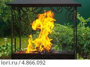 Купить «Огонь в мангале на фоне зелени», фото № 4866092, снято 24 июня 2013 г. (c) Зобков Георгий / Фотобанк Лори