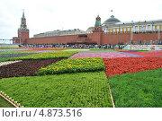 Купить «Фестиваль цветов на Красной площади в честь юбилея ГУМа  - 120 лет, Москва», эксклюзивное фото № 4873516, снято 20 июля 2013 г. (c) lana1501 / Фотобанк Лори