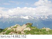 Красная поляна - прекрасные виды Западного Кавказа (2010 год). Стоковое фото, фотограф Чернова Анна / Фотобанк Лори