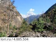 В Гималаях (2009 год). Стоковое фото, фотограф Eлена Кисель / Фотобанк Лори