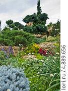 """Парковый ландшафт в парке """"Тайган"""" в Крыму (2013 год). Редакционное фото, фотограф мамутов мидат / Фотобанк Лори"""