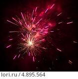 Купить «Фейерверк», фото № 4895564, снято 14 января 2012 г. (c) Никончук Алексей / Фотобанк Лори