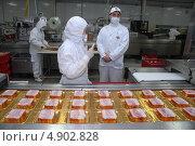 Производство колбасных изделий (2011 год). Редакционное фото, фотограф Мударисов Вадим / Фотобанк Лори