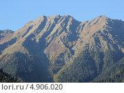 Абхазия. Горы окружающие озеро Рица. Стоковое фото, фотограф Анна Самохина / Фотобанк Лори