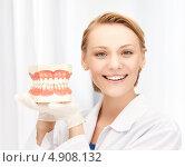 Купить «Зубной врач с макетом челюсти в кабинете», фото № 4908132, снято 17 апреля 2011 г. (c) Syda Productions / Фотобанк Лори