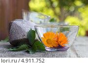 Салатник на фоне природы. Стоковое фото, фотограф Артём Садовников / Фотобанк Лори