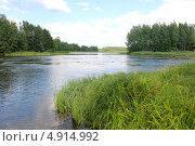 Озеро в Городецкой области. Стоковое фото, фотограф Олеся Головкина / Фотобанк Лори