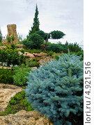 """Ландшафтный дизайн в парке """"Тайган"""" (2013 год). Редакционное фото, фотограф мамутов мидат / Фотобанк Лори"""