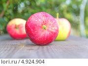 Купить «Спелые яблоки на деревянном столе в саду», фото № 4924904, снято 28 июля 2013 г. (c) Дудакова / Фотобанк Лори