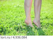 Купить «Босые женские ноги на траве, девушка стоит на цыпочках», фото № 4936084, снято 8 августа 2013 г. (c) Кекяляйнен Андрей / Фотобанк Лори
