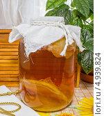 Купить «Чайный гриб в трехлитровой банке», эксклюзивное фото № 4939824, снято 10 августа 2013 г. (c) Наталья Осипова / Фотобанк Лори