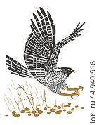 Летящий ястреб. Стоковая иллюстрация, иллюстратор Валентина Шибеко / Фотобанк Лори