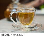 Зеленый чай в стеклянной чашке. Стоковое фото, фотограф Надежда Бобкова / Фотобанк Лори