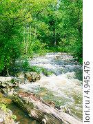 Купить «Горный ручей», фото № 4945476, снято 4 августа 2013 г. (c) Дмитрий Шульгин / Фотобанк Лори