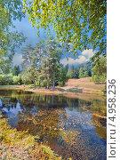 Купить «Летний пруд», фото № 4958236, снято 10 августа 2013 г. (c) Julia Shepeleva / Фотобанк Лори
