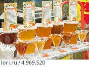 Купить «Продажа меда на ярмарке», фото № 4969520, снято 18 августа 2013 г. (c) Parmenov Pavel / Фотобанк Лори