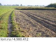 Вспаханное поле. Стоковое фото, фотограф Яна Королёва / Фотобанк Лори