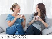 Купить «две девушки вместе пьют чай в гостиной и разговаривают», фото № 5016736, снято 2 апреля 2013 г. (c) Wavebreak Media / Фотобанк Лори