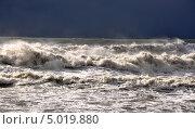 Купить «Зимний шторм на Черном море близ города Сочи», фото № 5019880, снято 13 февраля 2011 г. (c) Анна Мартынова / Фотобанк Лори