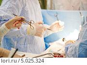 Купить «Хирургическое лечение», фото № 5025324, снято 3 сентября 2013 г. (c) Дмитрий Калиновский / Фотобанк Лори