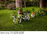Купить «Декоративная клумба в виде велосипеда на лужайке», фото № 5029628, снято 20 августа 2013 г. (c) Татьяна Назмутдинова / Фотобанк Лори