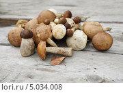 Купить «Кучка грибов подберёзовиков лежит на досках», эксклюзивное фото № 5034008, снято 2 сентября 2013 г. (c) Dmitry29 / Фотобанк Лори