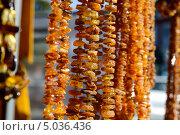Купить «Янтарные бусы», фото № 5036436, снято 9 сентября 2013 г. (c) Сергей Куров / Фотобанк Лори