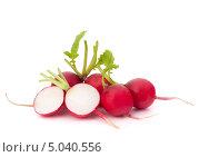 Купить «Редис на белом фоне», фото № 5040556, снято 17 апреля 2012 г. (c) Natalja Stotika / Фотобанк Лори