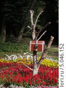 Купить «Сундук с замком на засохшем дереве», фото № 5046152, снято 11 августа 2013 г. (c) Евгений Андреев / Фотобанк Лори