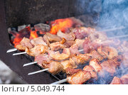 Купить «Аппетитный сочный шашлык жарится на мангале», фото № 5049744, снято 18 февраля 2019 г. (c) FotograFF / Фотобанк Лори