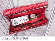 Купить «Открытый красный кошелек с чеком и деньгами в пустой металлической продуктовой корзине», фото № 5049864, снято 6 декабря 2019 г. (c) Элина Гаревская / Фотобанк Лори