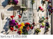 Купить «Фрагмент колумбария с цветами, Ваганьковское кладбище», эксклюзивное фото № 5053608, снято 25 января 2013 г. (c) katalinks / Фотобанк Лори
