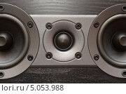 Купить «Черная акустическая система», фото № 5053988, снято 15 сентября 2013 г. (c) Владислав Осипов / Фотобанк Лори