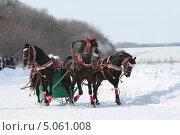 Купить «Зимняя тройка», фото № 5061008, снято 9 марта 2013 г. (c) Марюнин Юрий / Фотобанк Лори