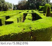 Лабиринт в парке Барселоны, Каталония, Испания (2013 год). Стоковое фото, фотограф Яков Филимонов / Фотобанк Лори