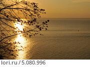 Осенний закат на реке Волге. Стоковое фото, фотограф Андрей Горшков / Фотобанк Лори