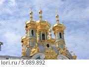 Купола Екатерининского дворца (2013 год). Редакционное фото, фотограф Андрей Кушнирук / Фотобанк Лори