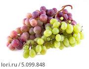 Купить «Грозди красного и зелёного  винограда, изолированно на белом фоне», фото № 5099848, снято 7 сентября 2013 г. (c) Литвяк Игорь / Фотобанк Лори