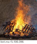 Купить «Большой костер  - горящее дерево», фото № 5100396, снято 29 сентября 2013 г. (c) SevenOne / Фотобанк Лори