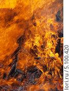 Купить «Огонь - горящее дерево», фото № 5100420, снято 29 сентября 2013 г. (c) SevenOne / Фотобанк Лори