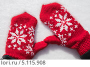 Купить «Зимние варежки на снегу», фото № 5115908, снято 7 апреля 2013 г. (c) Швайгерт Екатерина / Фотобанк Лори