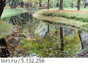 Осень и отражение. Стоковое фото, фотограф Наталья Наточина / Фотобанк Лори