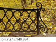 Купить «Фрагмент металлической решетки моста на фоне желтой осенней листвы», фото № 5140884, снято 10 октября 2013 г. (c) Илюхина Наталья / Фотобанк Лори